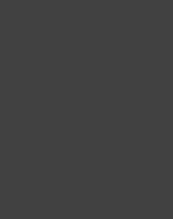 Bopgun Logo