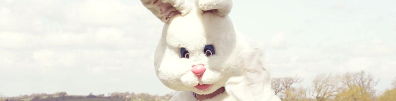 Making the rabbit run