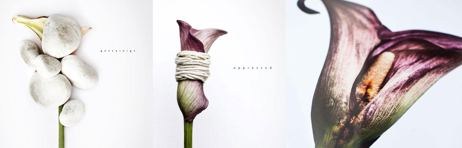 Blog-Post-flowers-image9