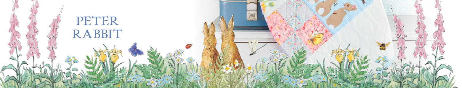 Bopgun partners with Hachette for another national website launch | Peter Rabbit